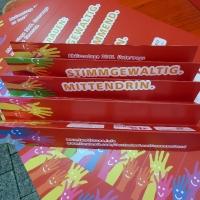 Aktionstag der LF in Sinsheim (10)
