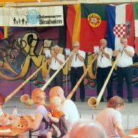 Aktionstag der LF in Sinsheim (12)