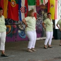 Aktionstag der LF in Sinsheim (9)