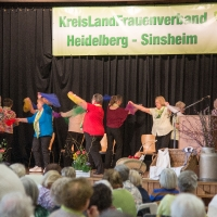 Landfrauentag 2016 in Dielheim