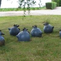 Garten Frau Hauk 11.6.14 007