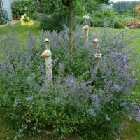 Garten von Frau Hauk 11. Juni 2014
