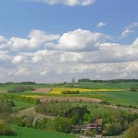 Eschelbacher Fluren